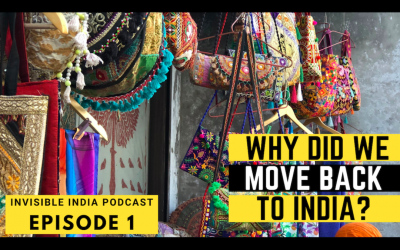 Intro to Us | Why Did We Move Back to India?